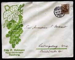 A5763) DR Dekorativer Privat-GA-Umschlag Hohmann Hamburg 19.02.08 - Deutschland