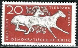 A12-49-9) DDR - Michel 554 - ** Postfrisch (A) - 20Pf  Tierpark Berlin, Ladakh-Wildschafe - [6] République Démocratique