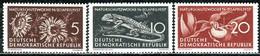 DDR - Mi 561 / 563 - ** Postfrisch (A) - Naturschutzwoche - [6] République Démocratique
