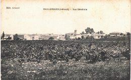 Carte Postale Ancienne De BAILLARGUES - France