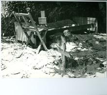 2 Photos Zaïre Tombe Et Culte Des Ancêtres Avec Leurs Objets Sacrés Congo 1988 Photo-service PP. Blancs - Afrique