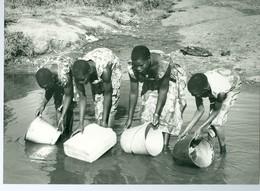 Photo Zaïre Environs De Logo. Ituri Corvées Eau Au Ruisseau Congo 1988 Photo-service PP. Blancs - Afrique