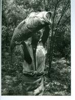 """Photo Zaïre Kasenyi. Beau """"capitaine"""" Du Lac Mobutu, Ex-lac Albert Congo 1988 Photo-service PP. Blancs - Afrique"""