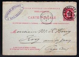 Carte Postale 13  -  Oblitération BRUXELLES Du 9 Août 1889 - Entiers Postaux