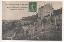 16.344/ Elevage De Chanteclerc (côté Ouest)- Trouffier - ANGOULEME - Angouleme