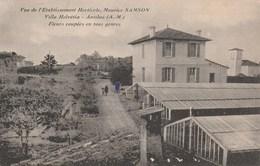 ANTIBES Villa Helvétia Vue De L'etablissement Horticole ;Maurice SAMSON 26K - Antibes