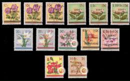 Sud Kasaï 0001/13* Fleurs MLH / Variétés - Sud-Kasaï