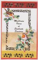 816 - CARTE MEILLEURS VOEUX ET SOUHAITS SINCERES .HOUE OISEAUX - Nouvel An