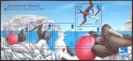 Ascension 2001 Birdlife International Birds Minisheet MNH - Sin Clasificación