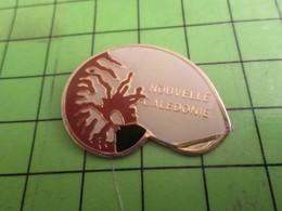 310c Pins Pin's / Rare & De Belle Qualité  THEME ANIMAUX / COQUILLAGE DE NOUVELLE-CALEDONIE - Animaux
