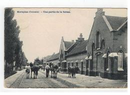 Merxplas (Colonie) - Une Partie De La Ferme 1908 - Merksplas