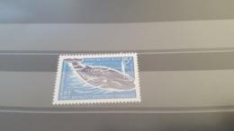 LOT 430713 TIMBRE DE COLONIE TAAF NEUF** - Terres Australes Et Antarctiques Françaises (TAAF)