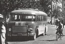 TREVISO, Piazza Duomo Con Autobus Corriera FIAT Modello 640 - Non Viaggiata - Treviso