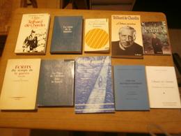 Teilhard De Chardin, Lot De 17 Livres, Voir Scan - Livres, BD, Revues