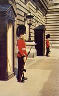Irish Guards On Sentry Duty At Buckingham Palace - London - Formato Piccolo Viaggiata Mancante Di Affrancatura – E 9 - Cartoline