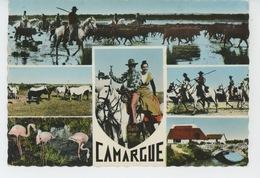 EN CAMARGUE - Paysage De Camargue , Chevaux , Gardians , Flamands Roses , Cabane De Gardian (1963) - France