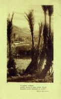 Paesaggistica - Con Frasi O Poemi - Versi - Di Guido Gozzano - Formato Piccolo Viaggiata – E 9 - Cartoline