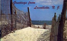 Greetings From Lavallette N.j. - Sand Path - Formato Piccolo Viaggiata Mancante Di Affrancatura – E 9 - Cartoline