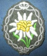 Insigne De Manche Edelweiss Troupes De Montagne WW2 - 1939-45