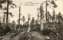 SENONES - Les Vosges Sommet Du Mont Pelé Après La Guerre Cimes Des Arbres Cassées - Senones