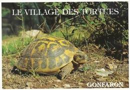 *CPM - 83 - GONFARON - Tortue Hermann Au Village Des Tortues - France