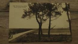 BELLE ILE EN MER : Route Du Bois Trochu  …… MF-1394 - Belle Ile En Mer