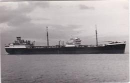 TENAGODUS - Tankers