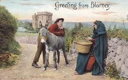 GREETINGS FROM BLARNEY. THE RALE BLARNEY. CIRCA 1910s- BLEUP - Cork