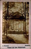Tirage Photo Albuminé Cartonné Original Tempel Auf Dem Niederwald (Temple Sur Le Taillis) Photo A. Baumann Rüdesheim - Anciennes (Av. 1900)
