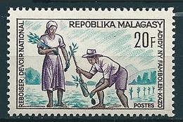 Madagaskar 1966  Aufforstung  Mi-Nr. 545 Postfrisch/MNH - Madagaskar (1960-...)