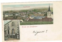 Gruss Aus JUNGLISTER,Maison Lesch Anstreicher 1294 Verl,P.Fiedler.REMICH - Postcards