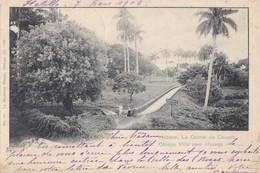 CUBA - Habana, La Quinta De Obispo - Cartes Postales