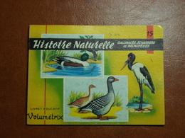 Livret éducatif Volumétrix - N°15 - Histoire Naturelle VIII - Gallinacés, Echassiers & Palmipèdes - Libri, Riviste, Fumetti