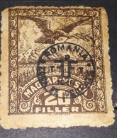 ERROR TRANSYLVANIA  ROMANIA  1919 Zone Occupation,  MISPLACED Overrpint  ,20 Filler,eagles - Transylvanie