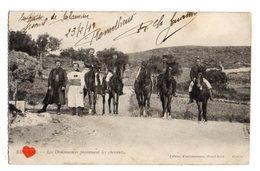 01035-LE-TUNISIE-Les Ordonnances Promenant Les Chavaux------------animée - Tunisie