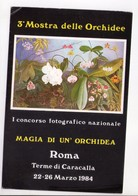 U4239 Mostra / Esposizione MAGIA DI UN ORCHIDEA - ASSOCIAZIONE LAZIALE ORCHIDEA - Fiori Fleurs Flores Flowers - Mostre, Esposizioni
