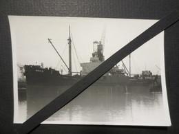 Ste Nationale D'affrêtement - Photo Originale - Cargo - SNA 8 - 1930 - 1960 - TBE - - Bateaux