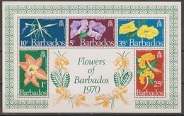 Barbados 1970 MiN°317 Block 1v MNH - Barbados (1966-...)