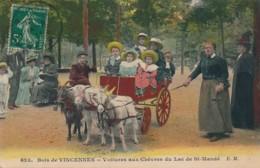 H230 - 75 - PARIS - Voiture Aux Chèvres Du Lac De Saint-Mandé - Petits Métiers à Paris
