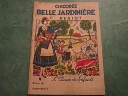 Chicorée BELLE JARDINIERE - C. BERIOT - Protège-cahiers