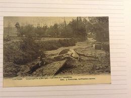 -postkaart, Leuven Dode Dieren Na De Overstroming, Gelopen 1906, Zegel 1 Cent Nr, 53 - Leuven