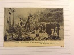-postkaart, Leuven Les Abords Du Mont César, Gelopen 1906, Zegel 1 Cent Nr, 53 - Leuven
