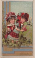 Chromo Image .. Demoisele Bouquet, Libellule, Fleurs, Enfant - Chromos