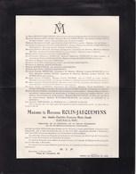 14-18 Médaille De La Reine Elisabeth Amélie DEMEURE épouse Baron ROLIN-JAEQUEMYNS 1863-1923 WIESBADEN LAEKEN - Décès