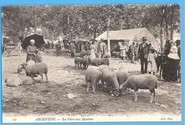 36-ARGENTON Sur CREUSE - INDRE En BERRY - FOIRE AUX MOUTONS VERS 1907 - BON ETAT - France