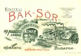 BEER * ALCOHOLIC DRINK * KOBANYA BREWERY * DREHER BREWERIES * HAGGENMACHER * BUDAFOK * Reg Volt S 011 * Hungary - Publicidad