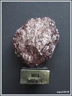 MICA FUSCHITE  Sur Socle Bois - Minéraux