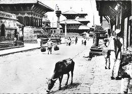 Népal - Kathmandou (Katmandou) Un Aspect Du Quartier Des Temples - Photo A. Robillard Signée - Carte Non Circulée - Népal