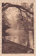CPA - 4260. BORDEAUX Dans Le Jardin Public - Bordeaux