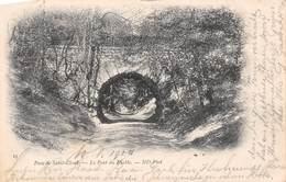Parc De Saint-Coud - Le Pont Du Diable - 1902 - Saint Cloud
